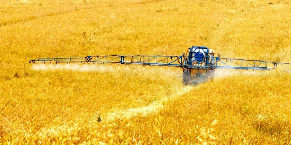 Roundup Revealed: Glyphosate in Our Food System