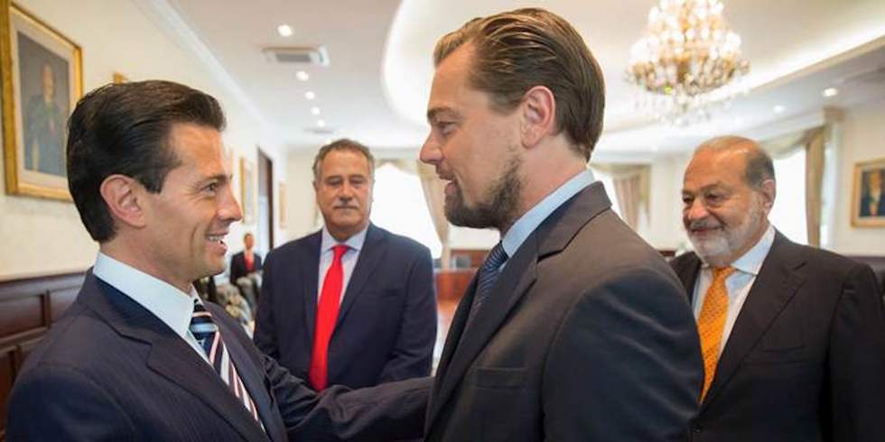 DiCaprio Teams With Mexican Government to Save World's Most Endangered Marine Mammal