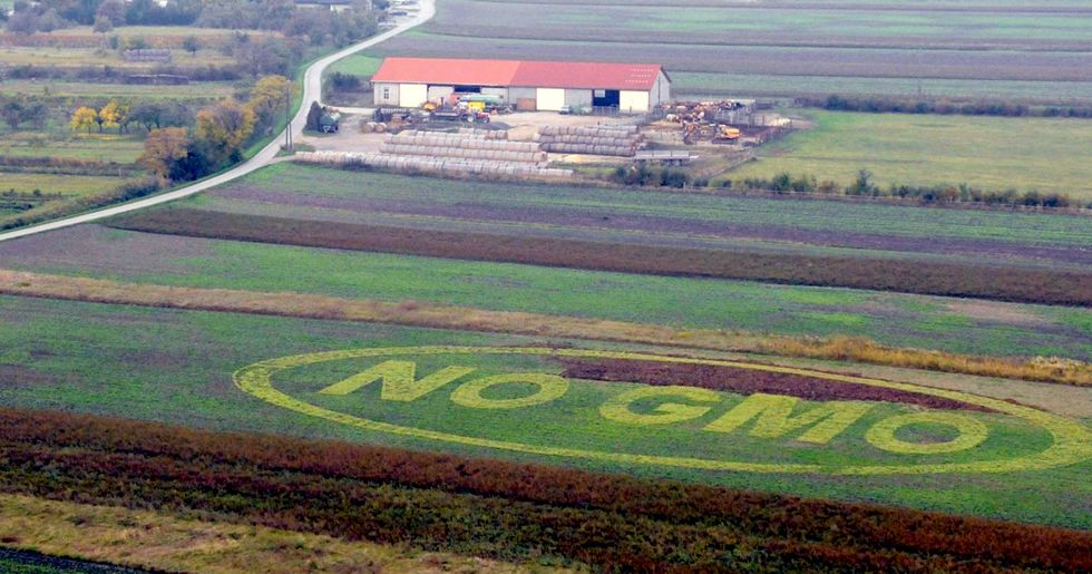 4 Signs We're Winning the Battle Against Monsanto