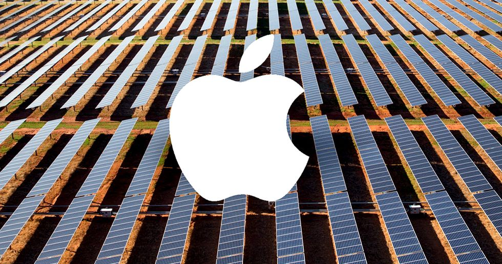 Apple Responds to Trump's Paris Exit With $1 Billion Green Bond
