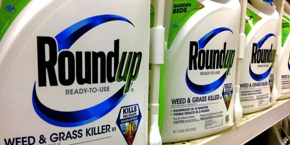 Monsanto Accuses IARC Scientist of Withholding Glyphosate Data in Cancer Risk Assessment