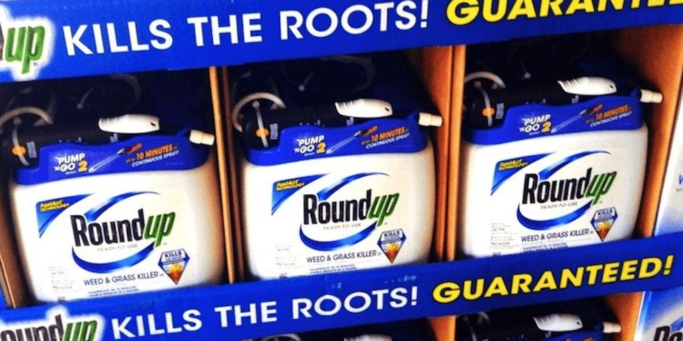 Appeals Court Denies Monsanto's Request for Reconsideration Post Controversial Reuters Story