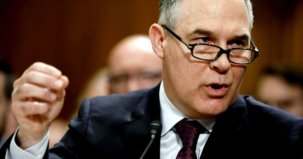 Top EPA Official 'Bullied' Scientist to Change Congressional Testimony