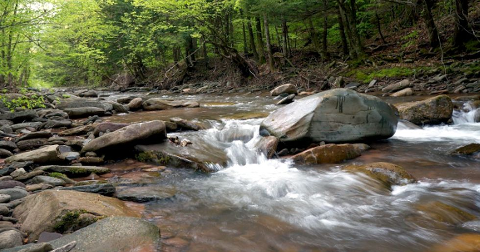 EPA Moves to Eliminate Essential Clean Water Act Protections