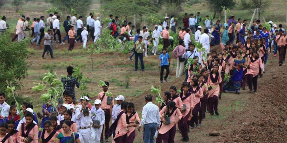 1.5 Million Volunteers Plant 66 Million Trees in 12 Hours, Breaking Guinness World Record