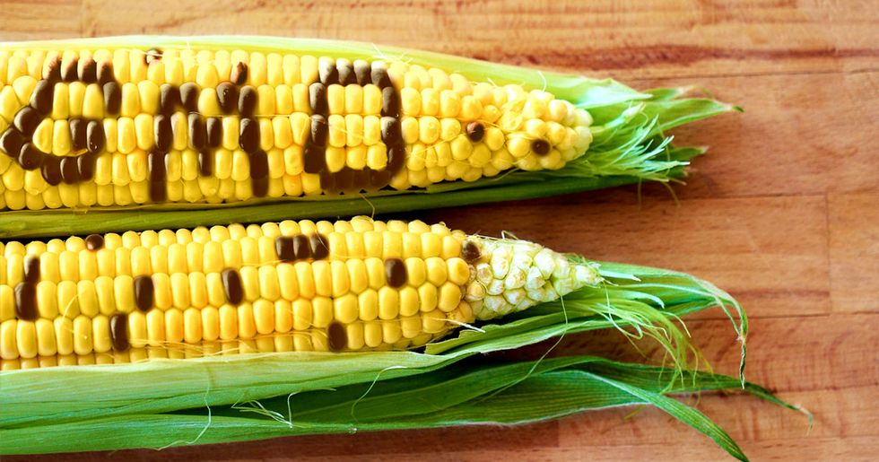 How the GMO Industry Gets Journalists to Buy Its Messages