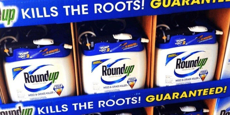 Just Released Docs Show Monsanto 'Executives Colluding With Corrupted EPA Officials to Manipulate Scientific Data'