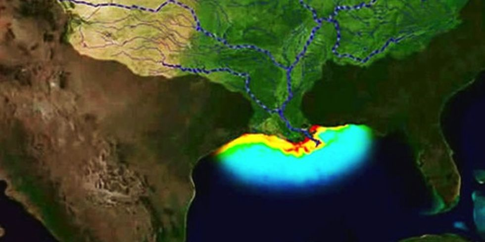 Gulf of Mexico's Dead Zone Could be Largest Ever, Thanks to the Meat Industry
