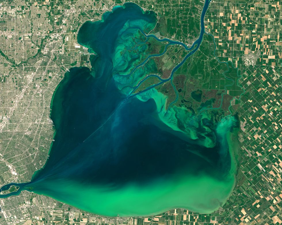 Climate Change to Fuel More Toxic Algal Blooms, Dead Zones