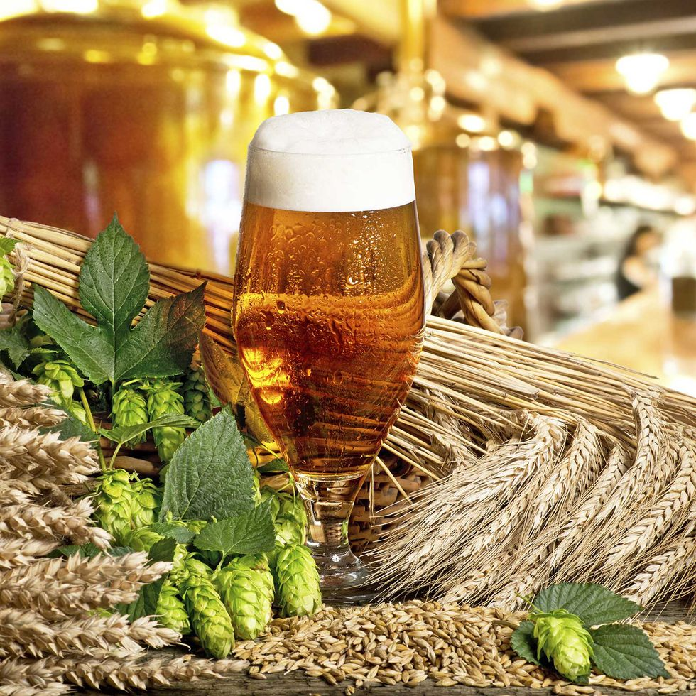 Good News for Craft Beer Lovers