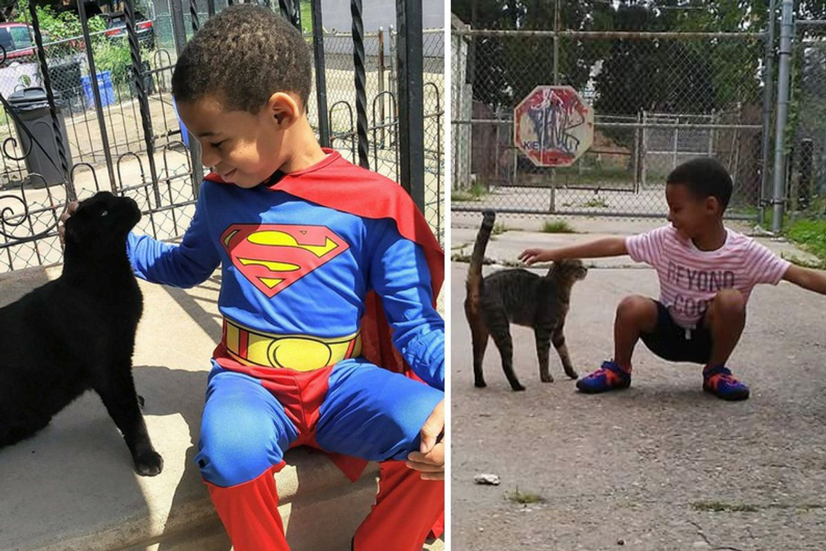5 Year Old Boy Helps Save Street Cats and Becomes Their Superhero...