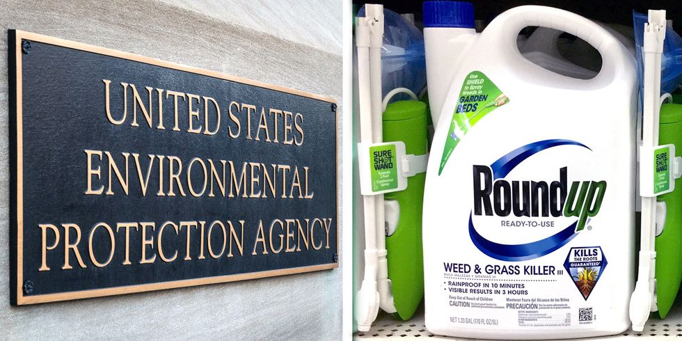 Collusion or Coincidence? Records Show EPA Slowed Glyphosate Review in Coordination With Monsanto