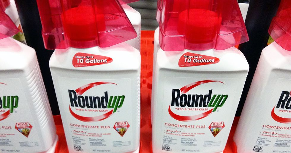 Internal EPA Documents Show Scramble for Data on Monsanto's Roundup