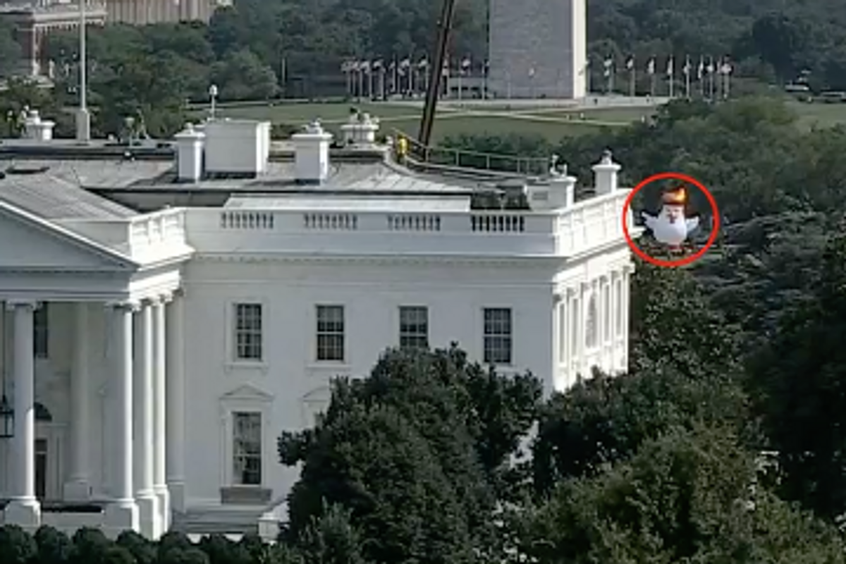 An Enormous Inflatable Chicken with Orange Hair Is Hovering Behind the White House