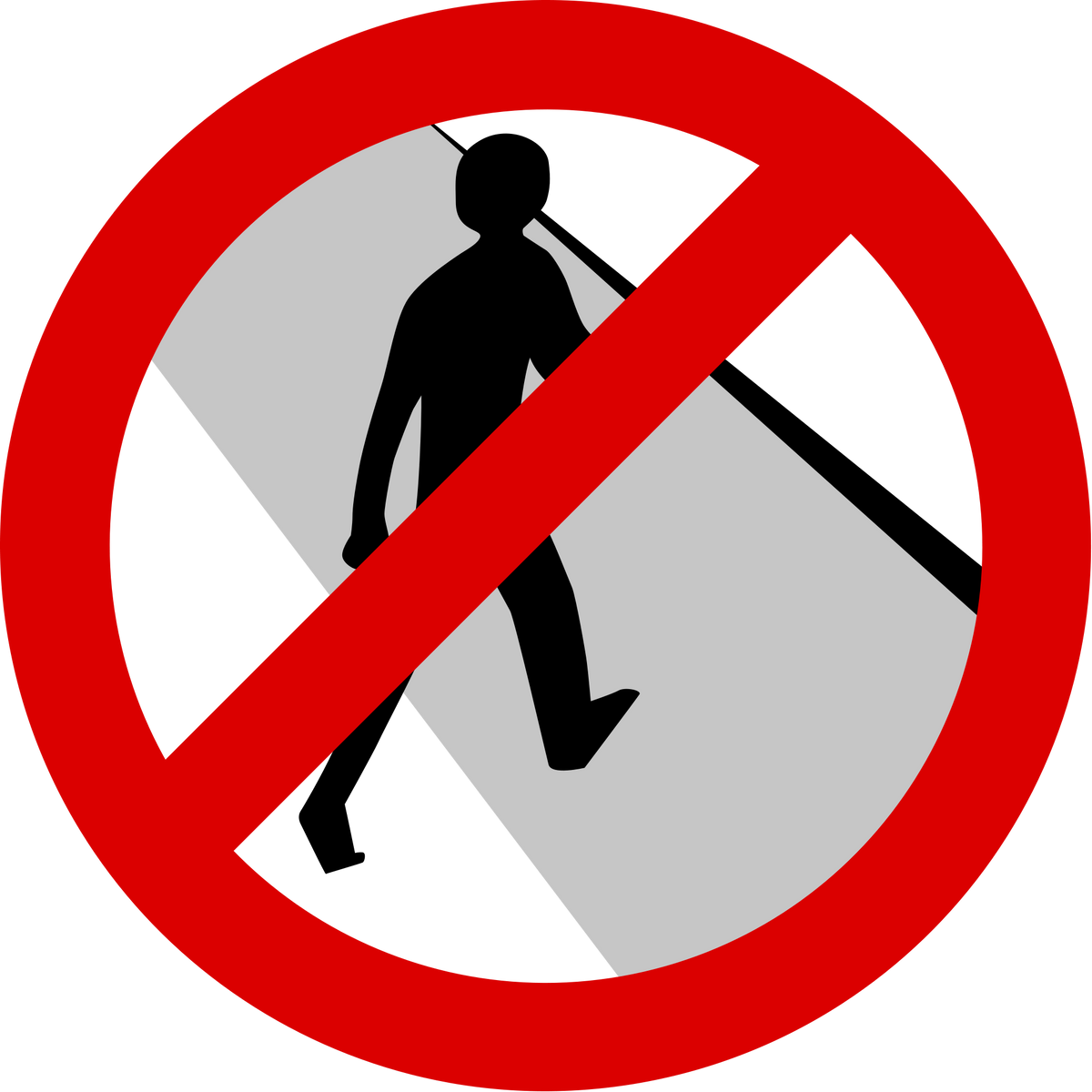The Jaywalking Epidemic And Why It Needs To Stop