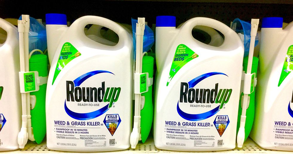 Monsanto Calls for Investigation Into WHO Agency for Ignoring Monsanto-Funded Studies