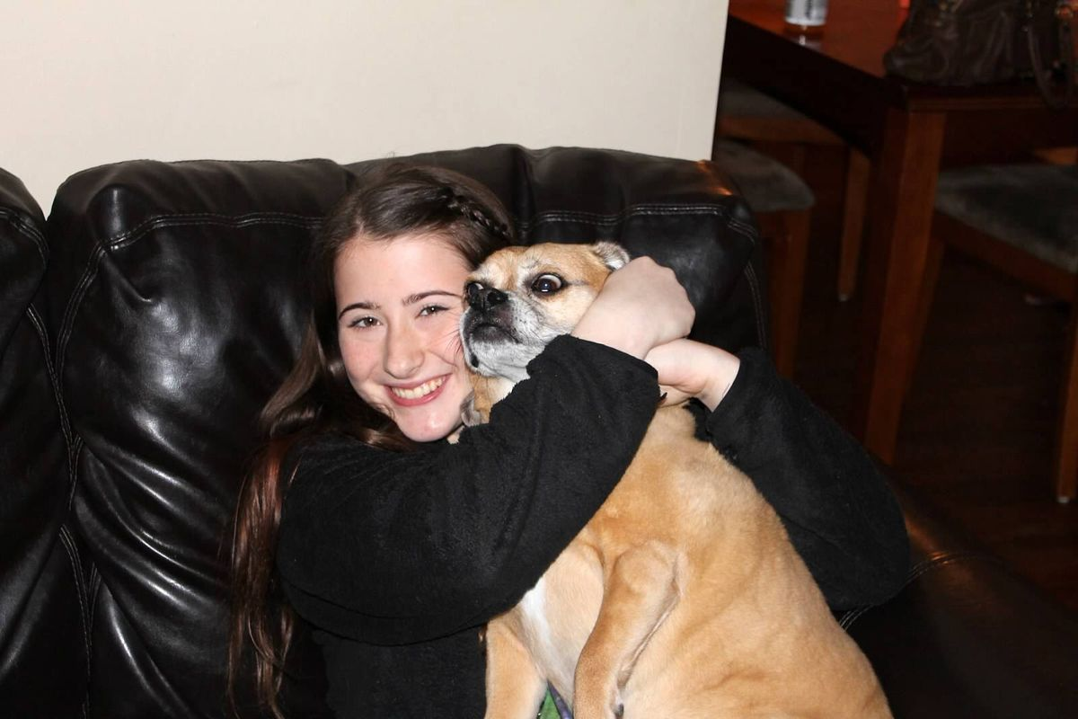 Dealing With the Loss of a Pet in College