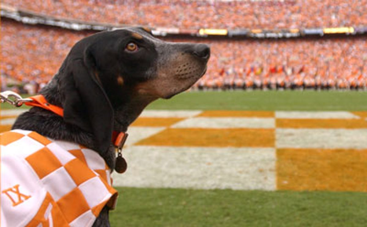 Checkerboard Endzones: A Tennessee Tradition