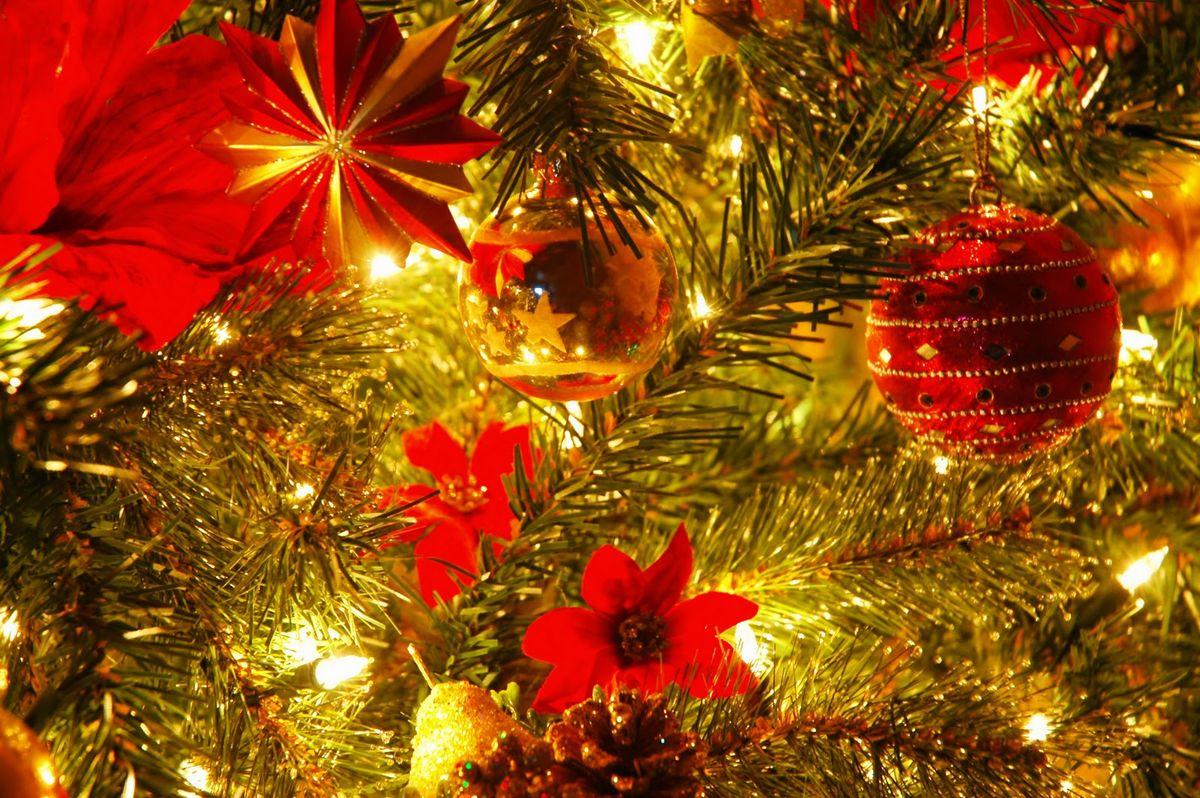 20 Reasons Why I Love the Holiday Season