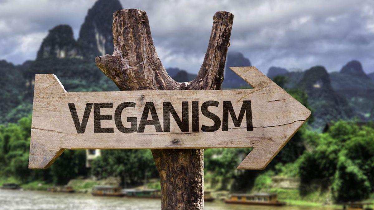 Why I Quit Veganism