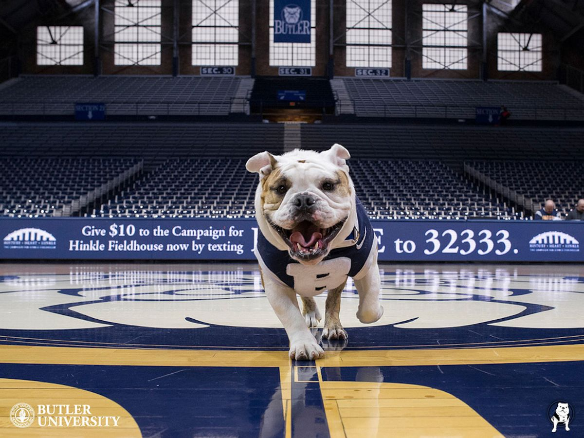 Butler Is More Global Than You Think