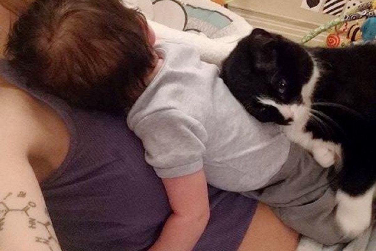 cat keeps baby safe cuddling with him since before birth