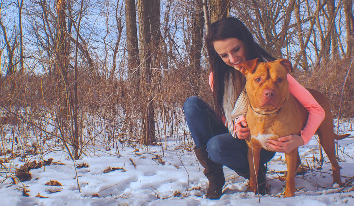 I Was Attacked By A Pit Bull, So Then I Got My Own