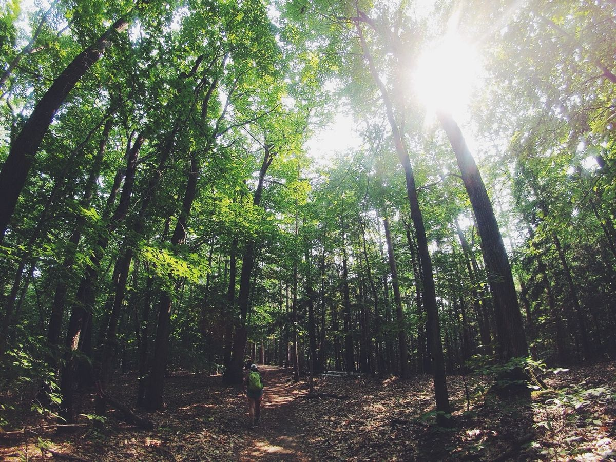 7 Of The Best Hiking Spots In Indiana