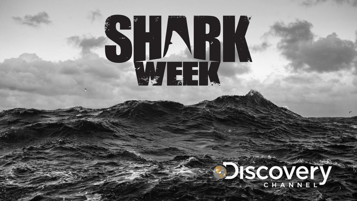 Time To Dive In: Shark Week Returns For Its 29th Edition