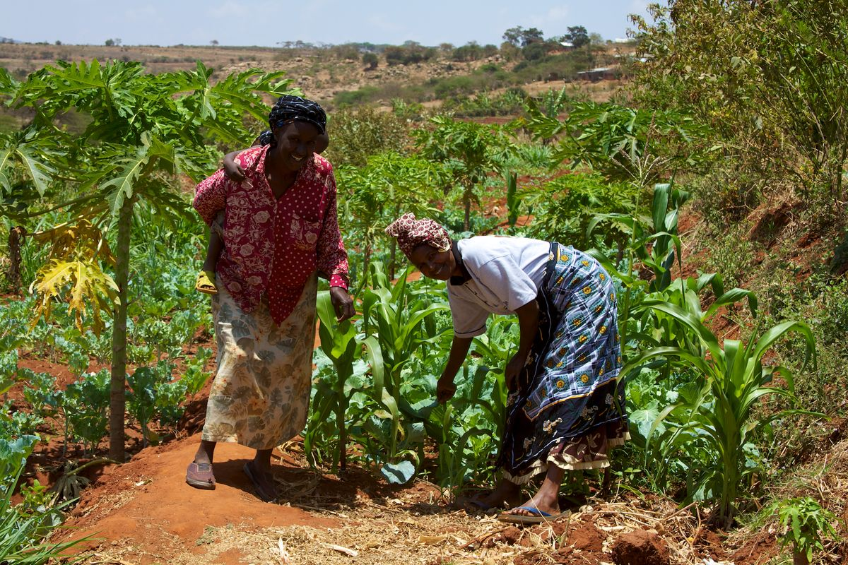 Gender Inequality in East Africa