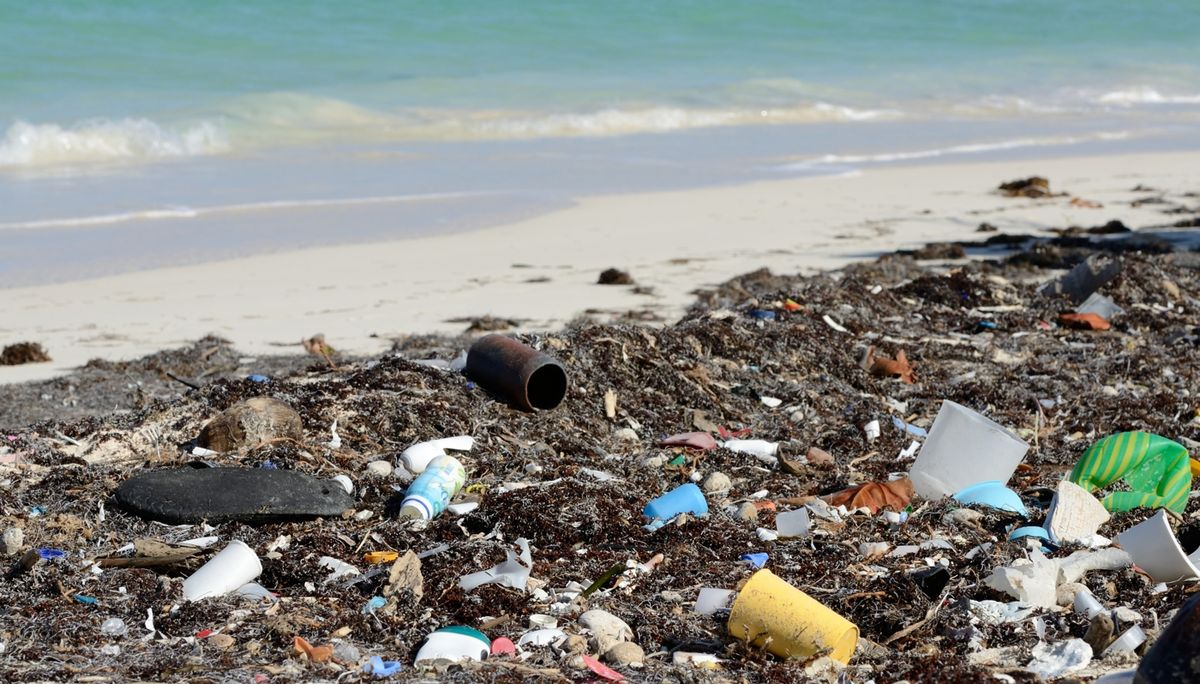 Why We Need To Keep Our Beaches Clean
