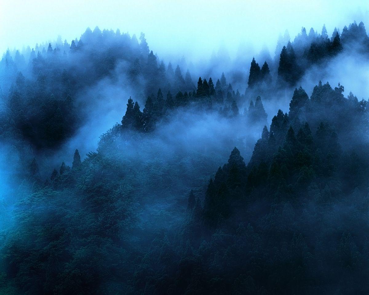 Veil Of Dawn