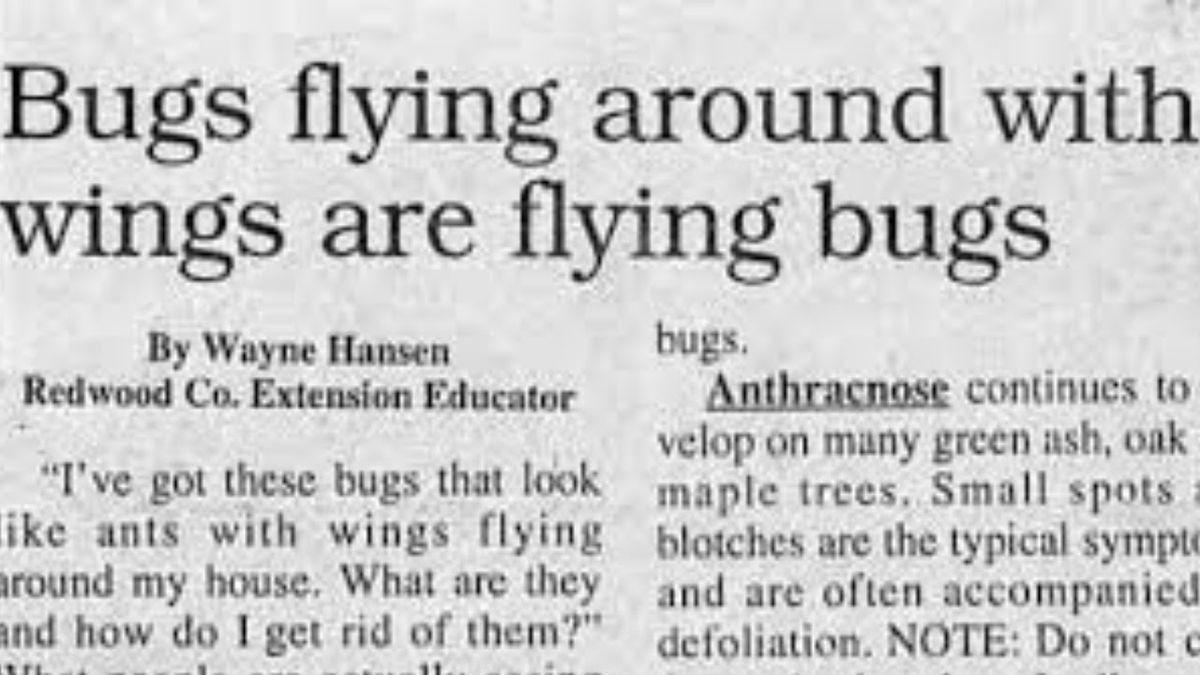 5 Worst Newspaper Headlines