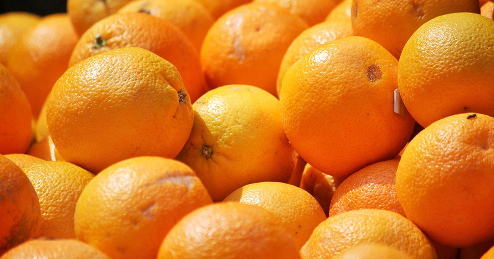 How Discarded Orange Peels Transformed a Barren Landscape Into a Lush Forest