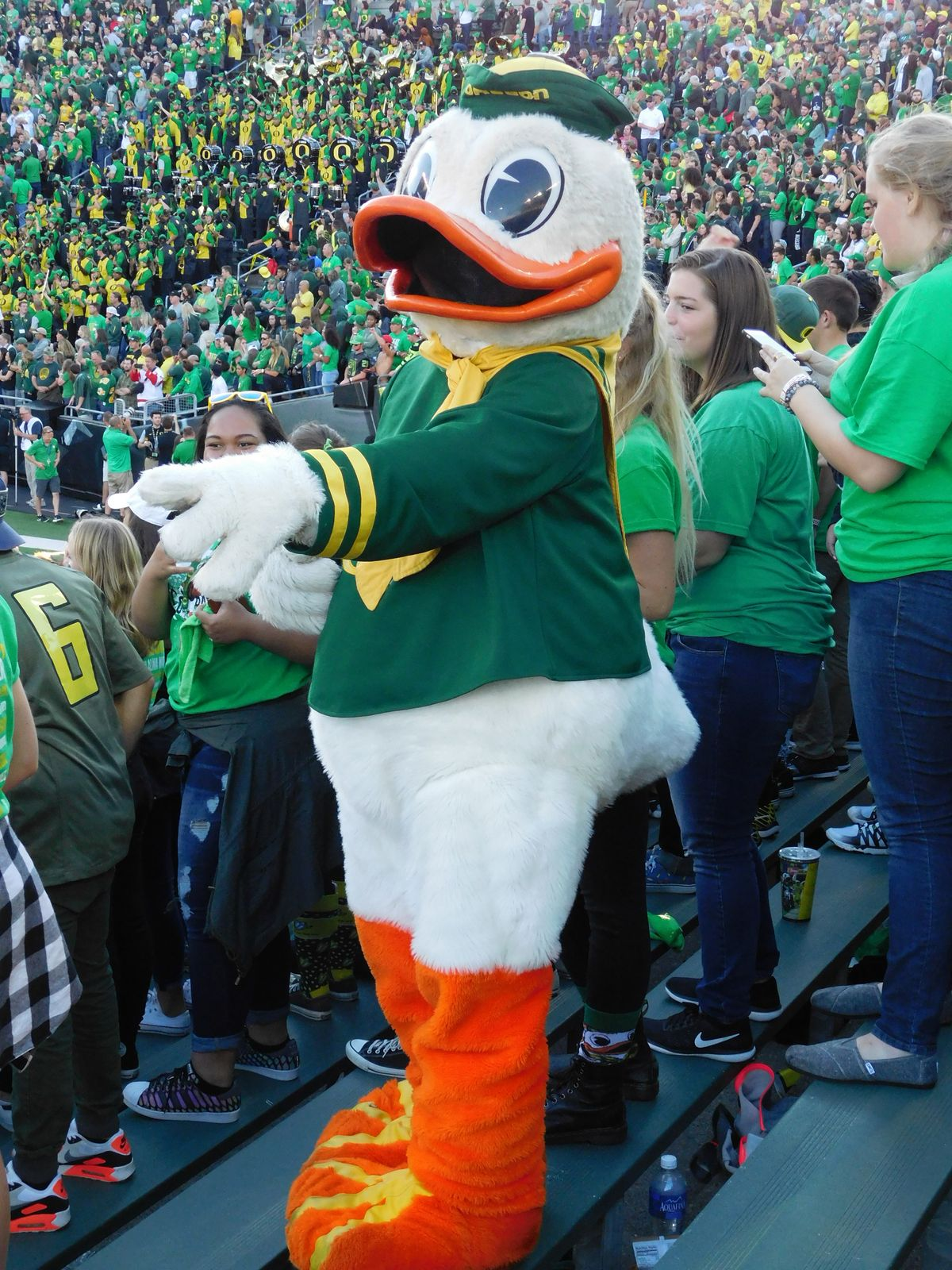 13 Things All Oregon Football Fans Know To Be True