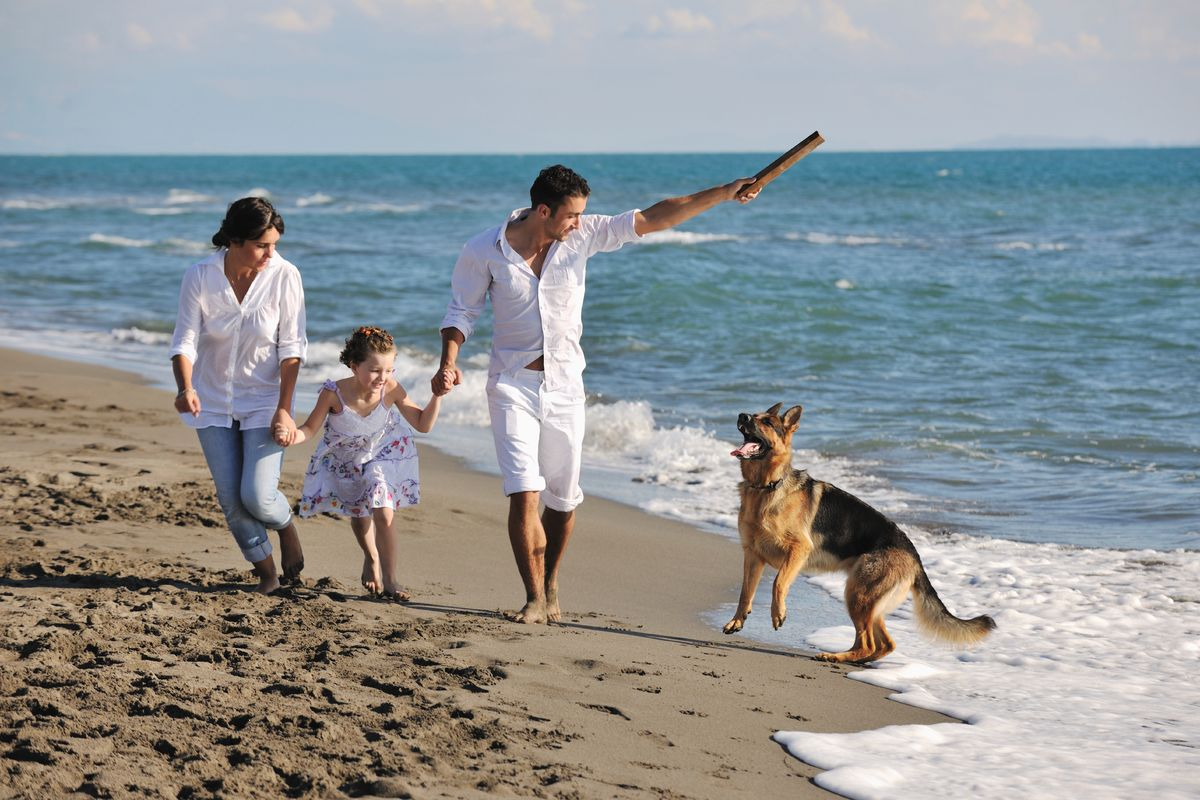 6 Ways You Know Your Pets Are Family