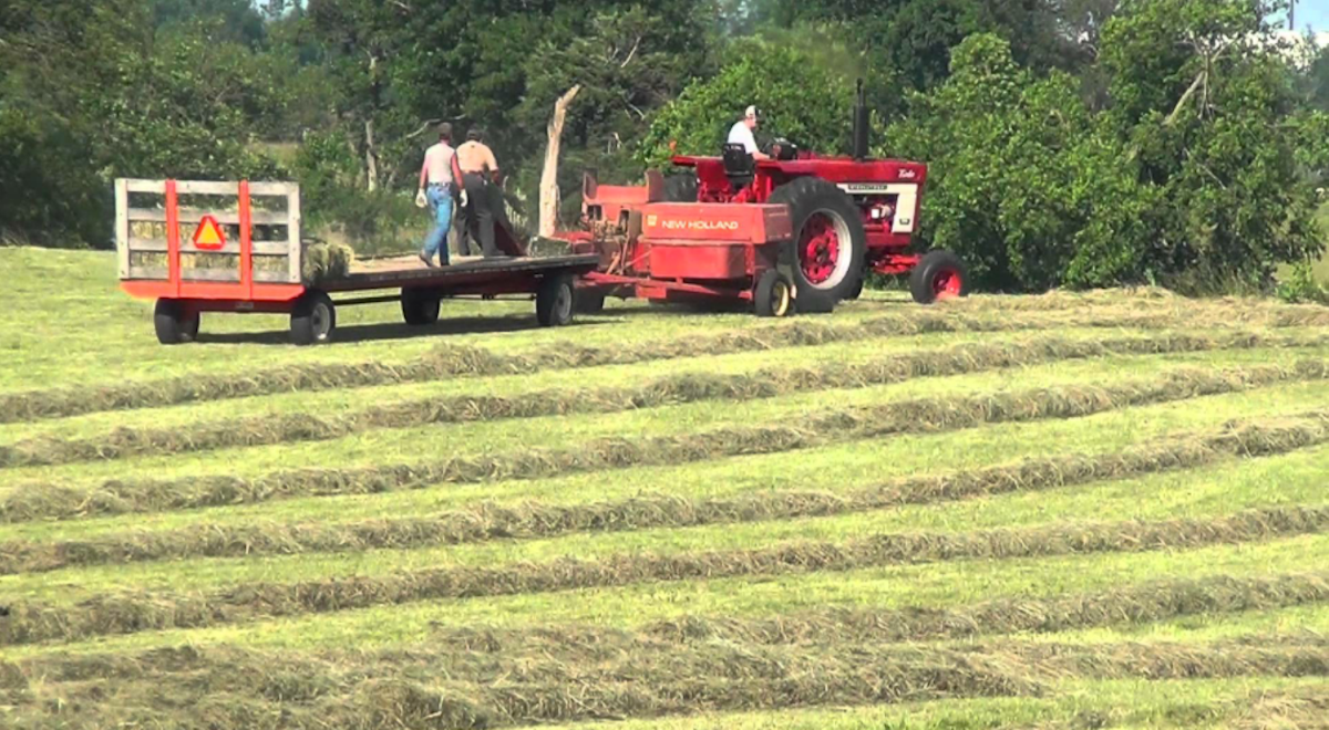 26 Thoughts Every Farm Kid Has When Baling Hay