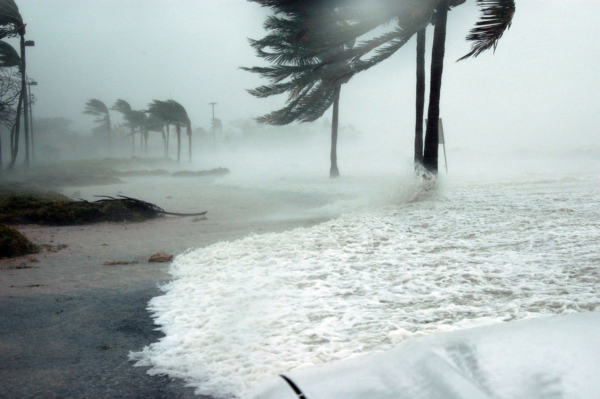 16 Things You Can Do While You Wait Out A Hurricane