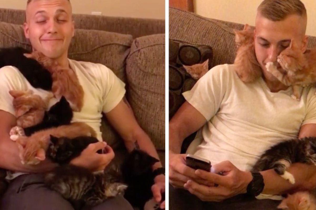 Man Visits 10 Kittens In Need of Love, They Make Him Their Cat Dad On the Spot!