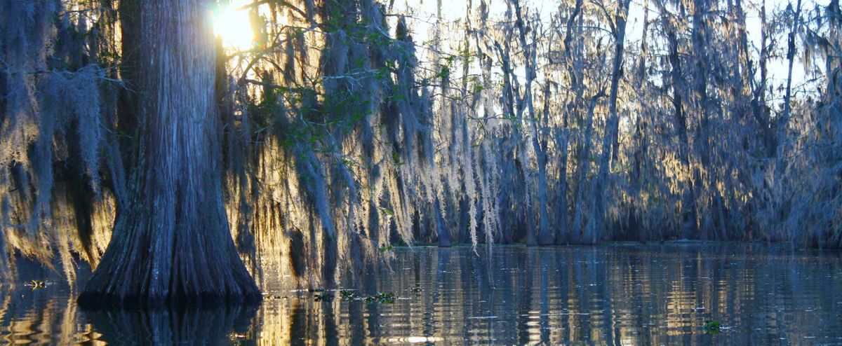 A Love Letter To Louisiana
