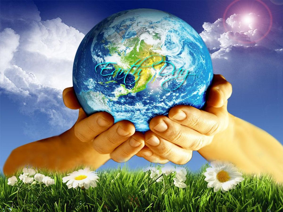 5 Ways To Help Save The Planet