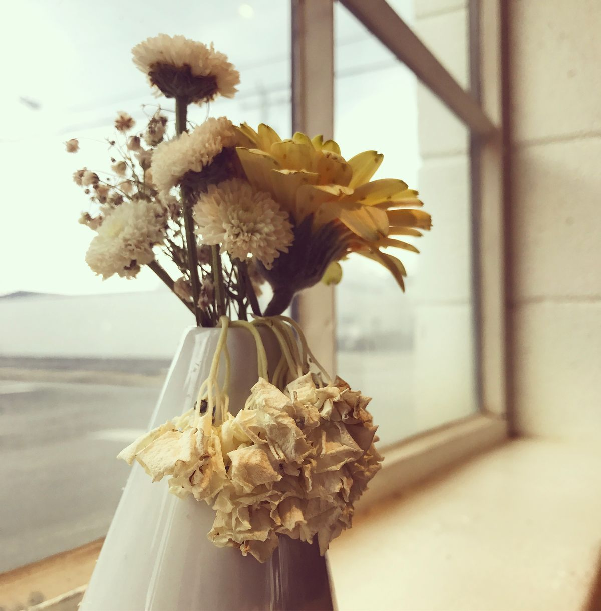 To Bloom Despite Adversity