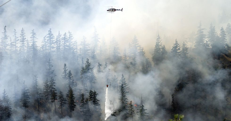 House, Senate Committees Attack Environmental Laws Using Wildfires as Pretext