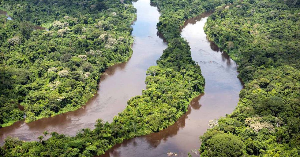 Brazil Backs Off Controversial Plan to Open Amazon Forest to Mining