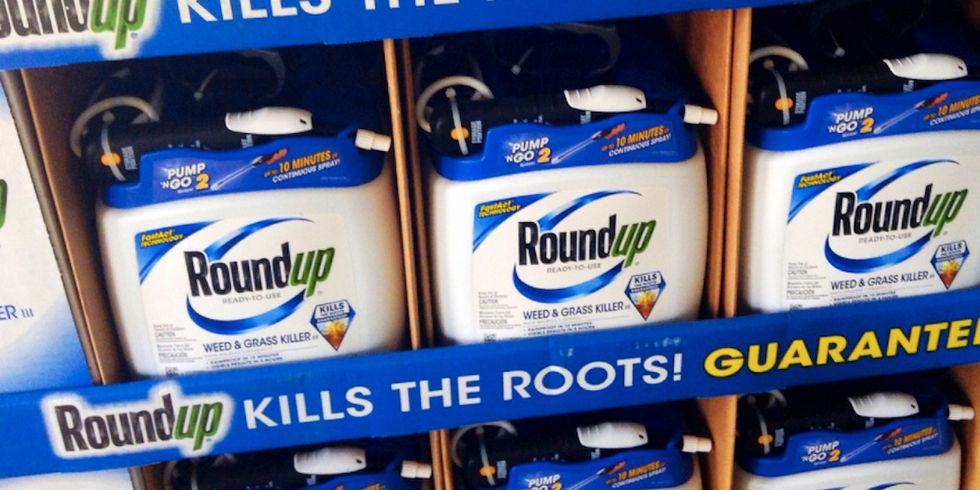France to Vote Against Glyphosate Reauthorization in Europe