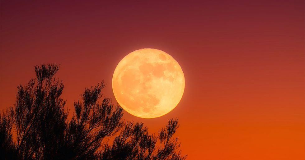 October Astronomical Highlights: Harvest Moon, Orionid Meteors