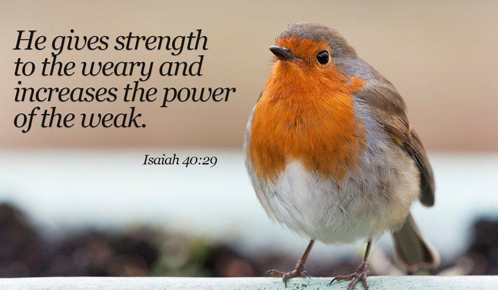 9 Bible Verses On Strength