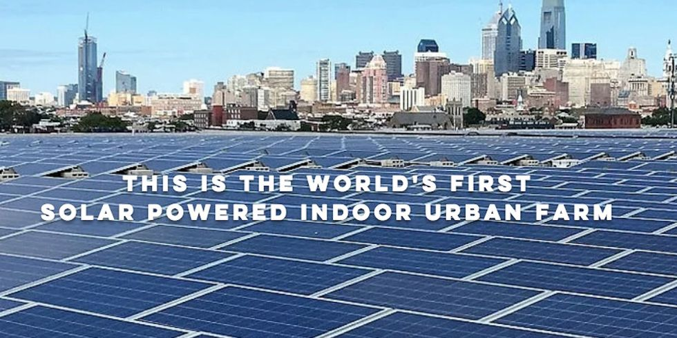 'World's First' Solar-Powered Indoor Farm Coming to Philadelphia