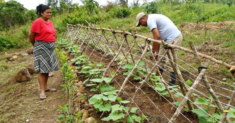 How to Start a Regenerative Agriculture Movement in Your Community