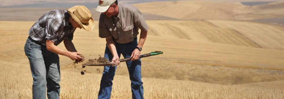 Is soil the great new integrator?